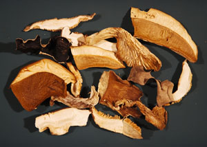Dried Mushrooms 300w